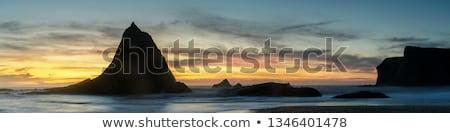 Szélesvásznú hold tenger 3d render óceán égbolt Stock fotó © kjpargeter