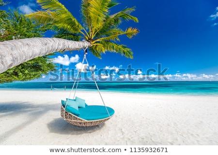 Függőágy víz Maldív-szigetek tengerpart utazás turizmus Stock fotó © dolgachov