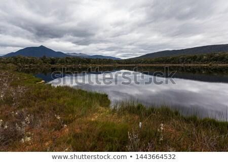 Spirito lago brano Neozelandese cielo albero Foto d'archivio © lostation