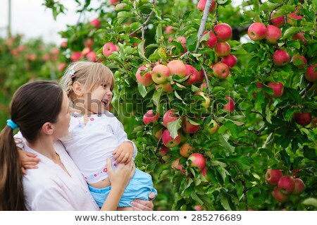 mother and her daughter with autumnal apple tree  Stock photo © phbcz