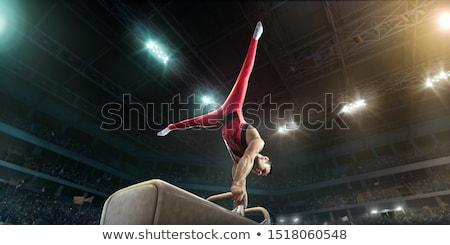 pommel horse Stock photo © Twinkieartcat