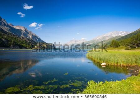 vallée · alpes · Suisse · ciel · nuages · forêt - photo stock © capturelight