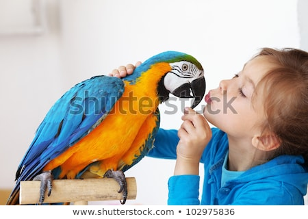 Portrait of a kid girl with her domestic parrot Stock photo © zurijeta