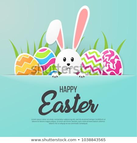 Easter Rabbit Handwritten Lettering Stock photo © Anna_leni