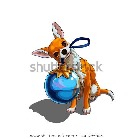 kutya · villanykörte · villanykörte · akasztás · fölött · szín - stock fotó © cynoclub