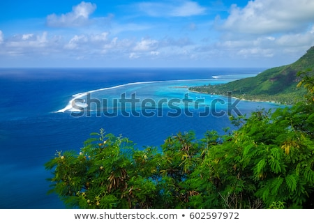 Aerial view of Opunohu, Cook's Bay and lagoon in Moorea Island Stock photo © daboost