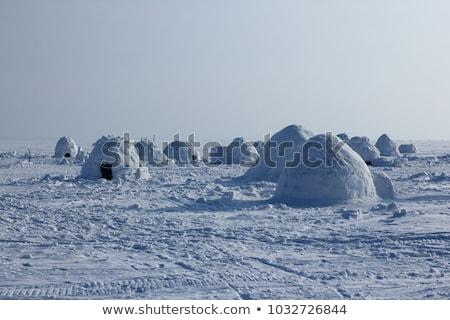 eskimo and igloo Stock photo © adrenalina