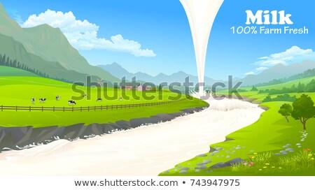 Illusztráció tehenek horzsolás mező vektor stílus Stock fotó © curiosity