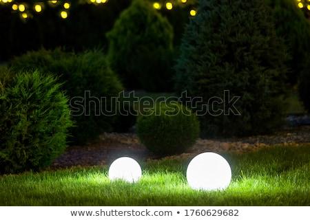 lantaarn · nacht · tuin · voorjaar · hout · ontwerp - stockfoto © dmitriisimakov