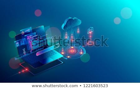 veri · yönetim · dizüstü · bilgisayar · ekran · iniş - stok fotoğraf © tashatuvango
