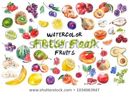 Aquarel kleurrijk illustratie ingesteld vers fruit Stockfoto © Sonya_illustrations