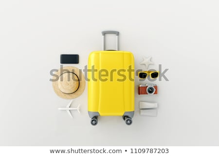 the travel vacation concept with luggage on white stock photo © elnur