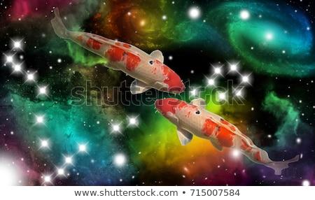 Hal állatöv asztrológia felirat kör horoszkóp Stock fotó © Krisdog