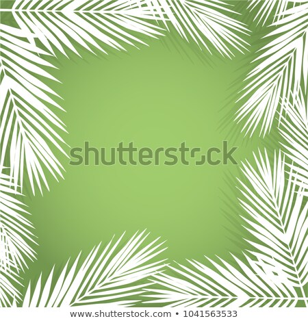 Stock photo: Palm leave border. Flat style. green and white.
