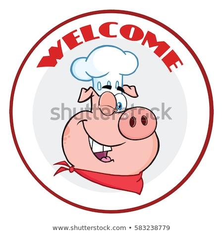 повар свинья мультфильм талисман характер круга Сток-фото © hittoon