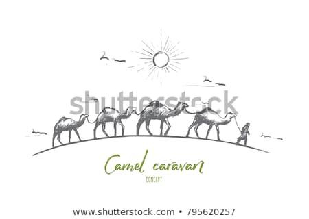 Foto stock: Deserto · caravana · elemento · paisagem · ilustração · sol
