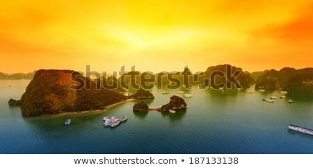 風景 · 長い · 北 · ベトナム · 成熟した - ストックフォト © romitasromala