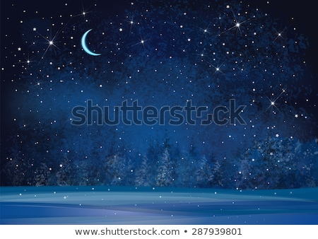 vector night sky with stars and dark forest trees Stock photo © freesoulproduction