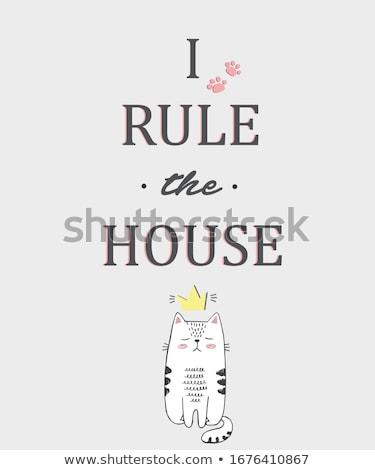Kot princess królewski domu domowych korony Zdjęcia stock © MaryValery
