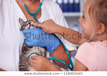 Little girl checking the teeth of her kitten at the veterinary Stock photo © ilona75