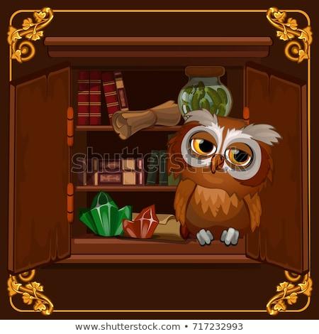 ポスター 画像 賢い フクロウ 座って 本棚 ストックフォト © Lady-Luck