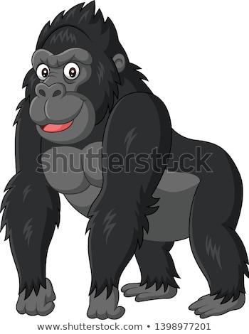 Rajz gorilla szafari illusztráció boldog mosolyog Stock fotó © cthoman