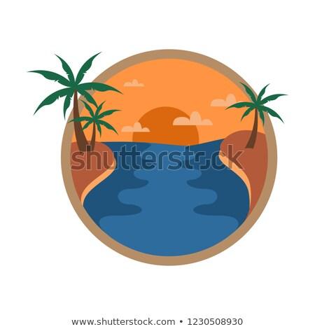 plaj · hindistan · cevizi · ağaçlar · örnek · gökyüzü · manzara - stok fotoğraf © svvell