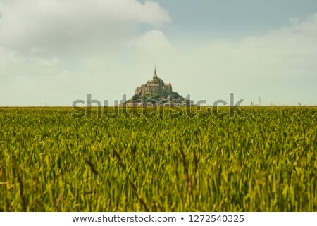 vintage Panoramic view of famous Le Mont Saint Michele, normandy Stock photo © doomko