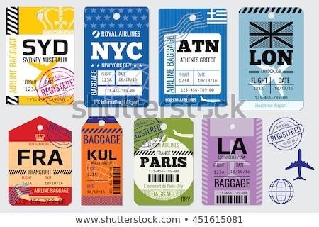 Bagagem viajar sacos adesivos vetor Foto stock © robuart