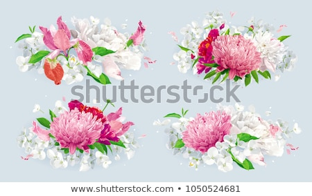 Tulips and Apple blossom vector background Stock photo © LisaShu