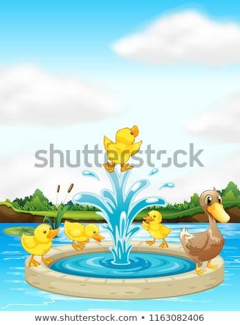 Fontana illustrazione uccello divertimento volare animale Foto d'archivio © colematt