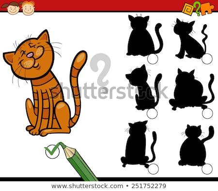 állat árnyék összeillő játék sablon illusztráció Stock fotó © colematt