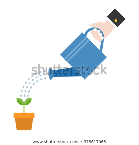 Irrigation Metal Equipment, Watering Pot Vector Stock photo © robuart
