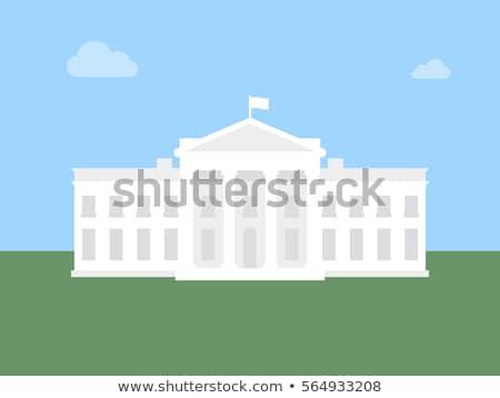 Beyaz ev ikon örnek yalıtılmış mavi iş Stok fotoğraf © vapi