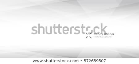 Absztrakt vektor kortárs alacsony fény nézőpont Stock fotó © ExpressVectors
