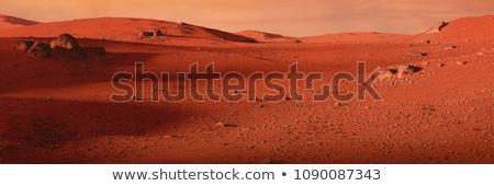 Vallei landschappen teen jongen bergen kin Stockfoto © olira