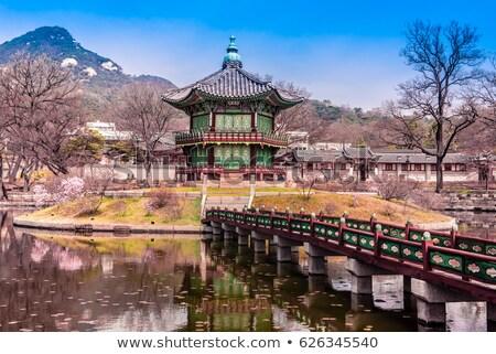 Palazzo Seoul Corea del Sud costruzione legno foresta Foto d'archivio © galitskaya