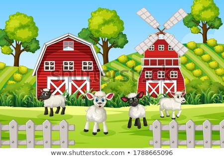 Farm scene in nature with barn and scarecrow and sheeps Stock photo © bluering