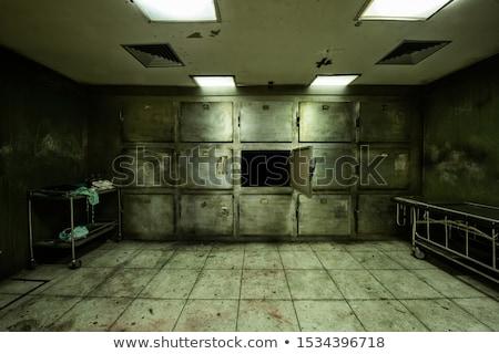 Vintage pokój metal ściany domu budowy Zdjęcia stock © Archipoch