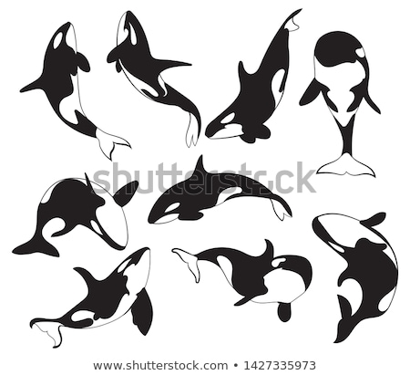 grande · azul · Cartoon · ballena · aislado · blanco - foto stock © dagadu