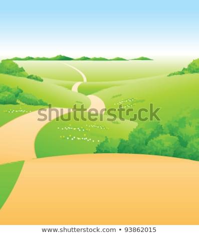 verde · paisaje · carretera · árboles · nubes · árbol - foto stock © zzve