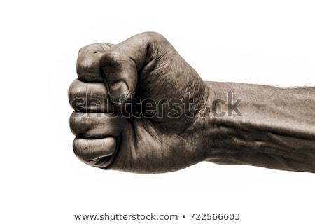 Man Fist Stock photo © fixer00