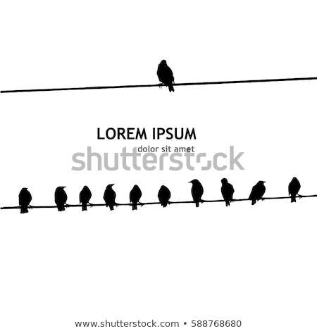 birds sitting on wire, vector background Stock photo © beaubelle