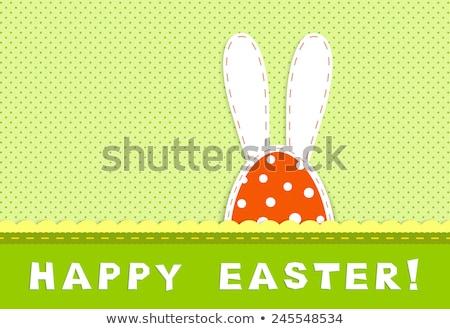 Easter egg amusant konijn illustratie abstract natuur Stockfoto © yurkina