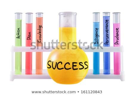 Formula of success Stock photo © raywoo