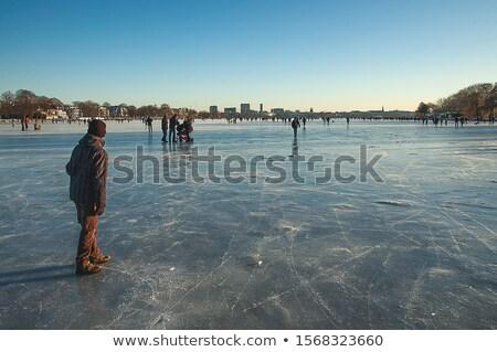 Hamburg bevroren skyline winter nacht meer Stockfoto © IngaNielsen