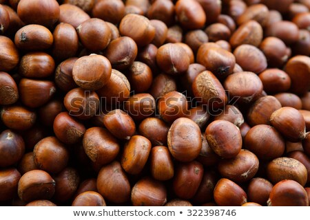Many Chestnuts Stock photo © tepic