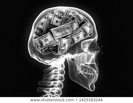 dollars as brain in skull Stock photo © pterwort