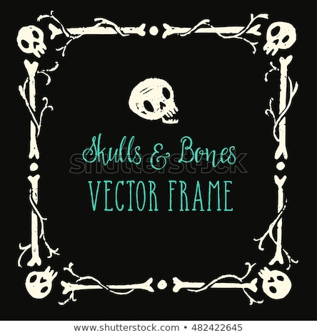 Bones frame Stock photo © carbouval