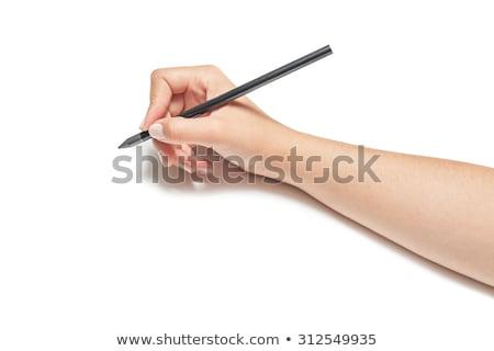 Foto stock: Mão · humana · desenho · lápis · vazio · papel · modelo